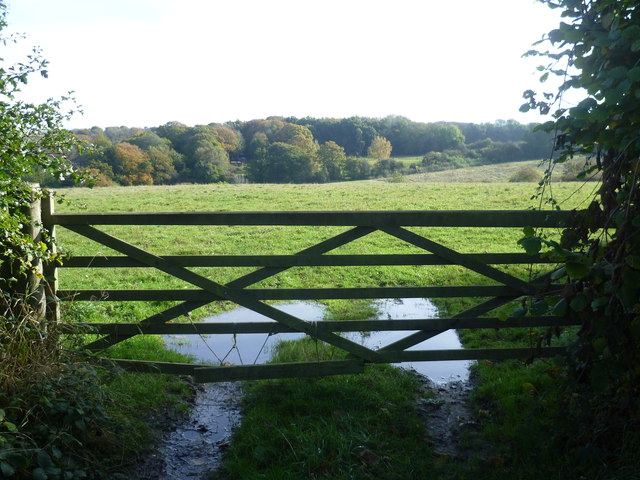 View over a gate from Charmwood Lane