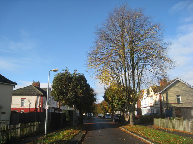 Hornsby Crescent in autumn
