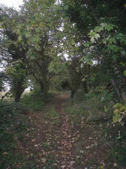 Footpath to Scawsby