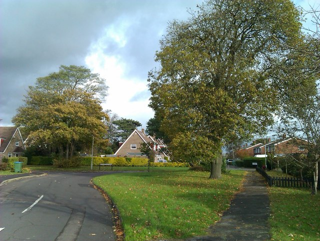 Looking into Woodbourne Close