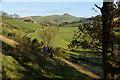 SJ9666 : Footpath from Danebridge by Bill Boaden
