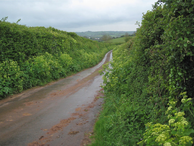 Ridgeway Lane in the rain, looking southwest