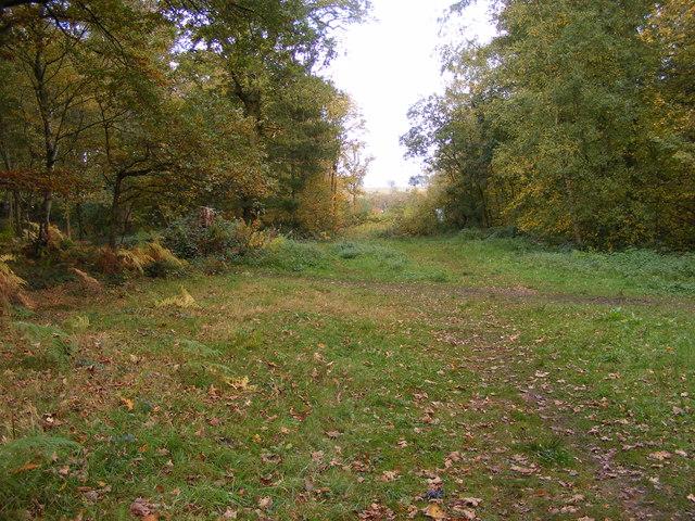 Plantation Footpath