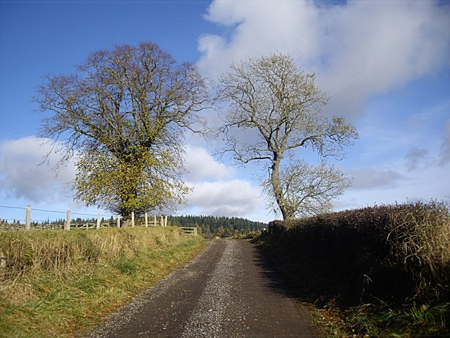 Crest of road from East Learney to Pond Cottage