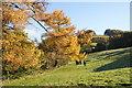 SJ9767 : Path by Clough Brook by Bill Boaden