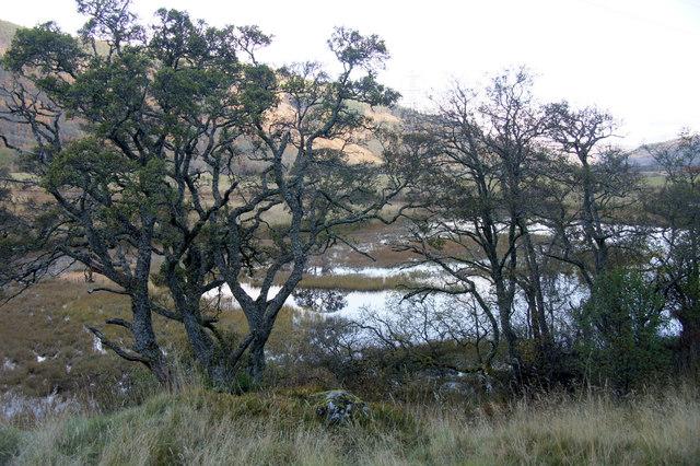Loch an Eilein, Strathglass