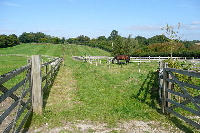 Footpath towards Idbury