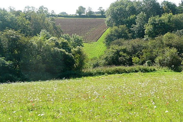 View from the end of the bridleway
