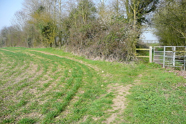 Footpath towards Church Hanborough