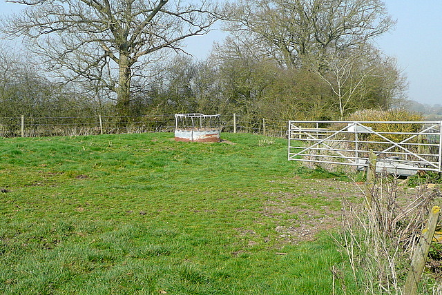 Field corner at Acre Hill Farm