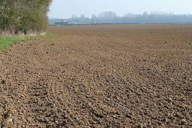 Arable land at New Wintles Farm