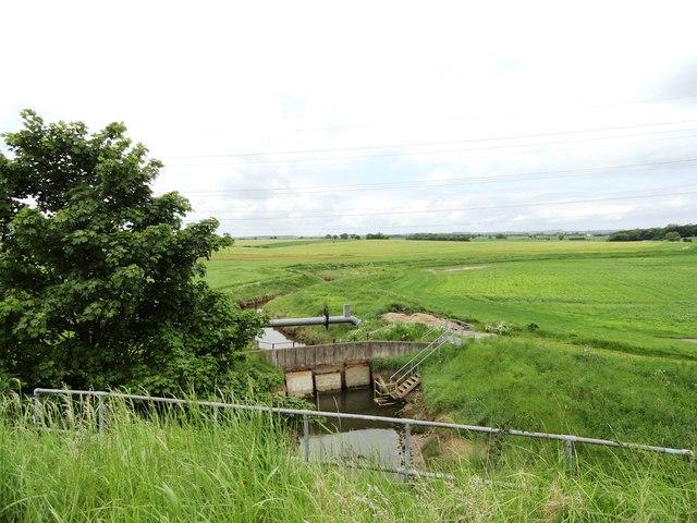 Tidal sluice gate