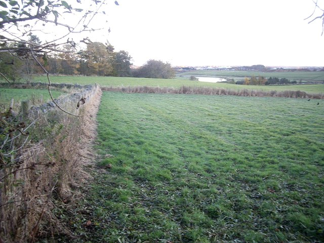 A view SE to the River Don