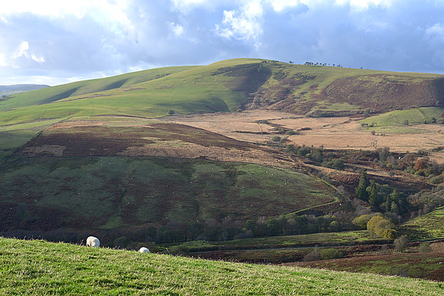 View towards Moel Hywel