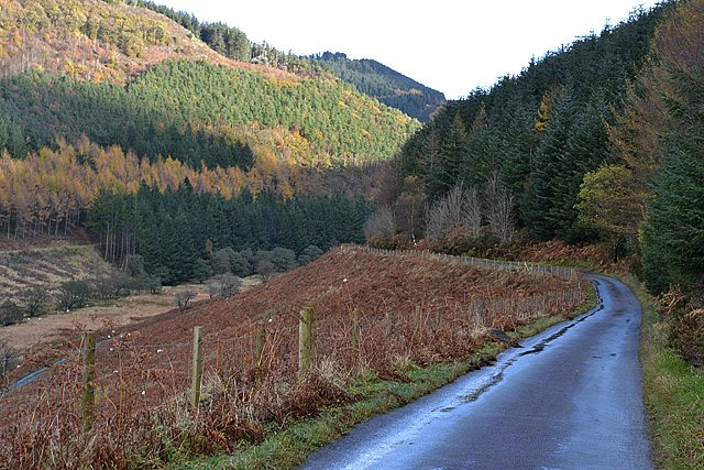 The Abbey Cwm-hir road descending into Cwm Hir