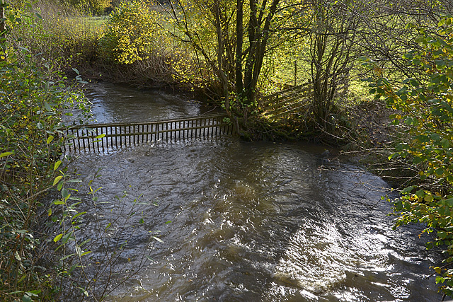 The Clywedog Brook at Cuckoo Bridge