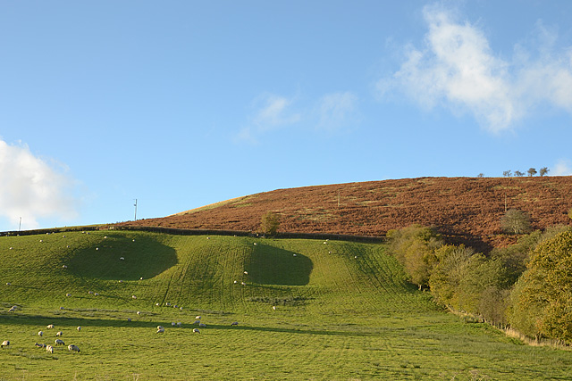 Hillside north of the A44