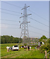 SU5610 : 400 KV Line Refurbishment, Mayles Lane by Peter Facey