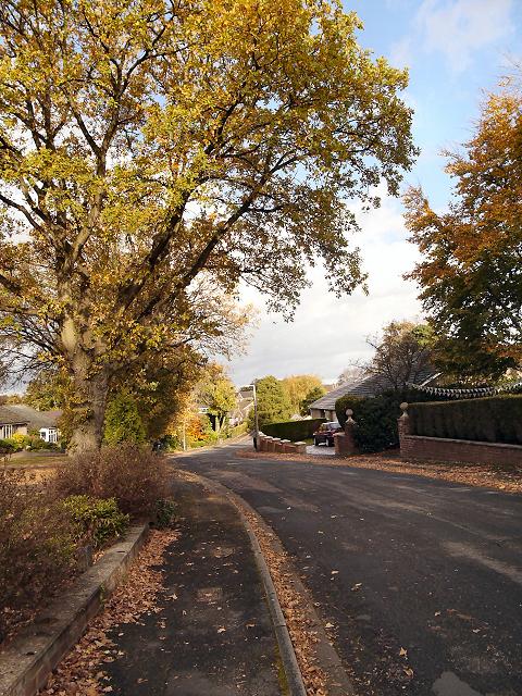 Gatley, Firs Road