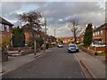 SJ8487 : Gatley, Borrowdale Avenue by David Dixon