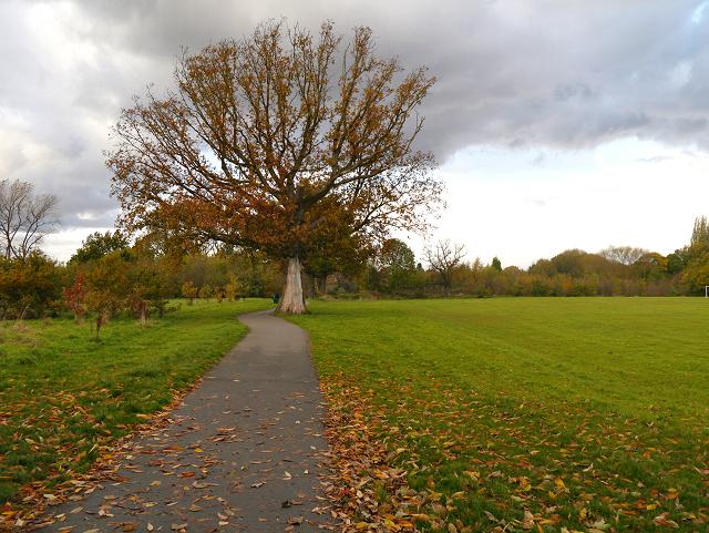 Heald Green, Rose Vale Park