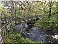 SX5381 : Standon Bridge over River Tavy by David Smith