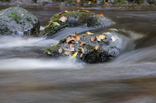 Stone in the Alyth Burn in Den o' Alyth