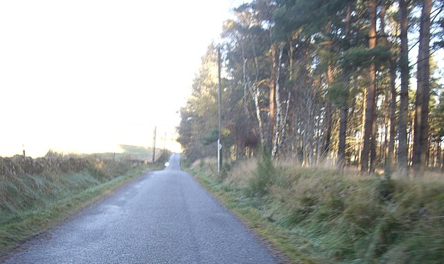 Minor road on northern edge of Scotstown Wood