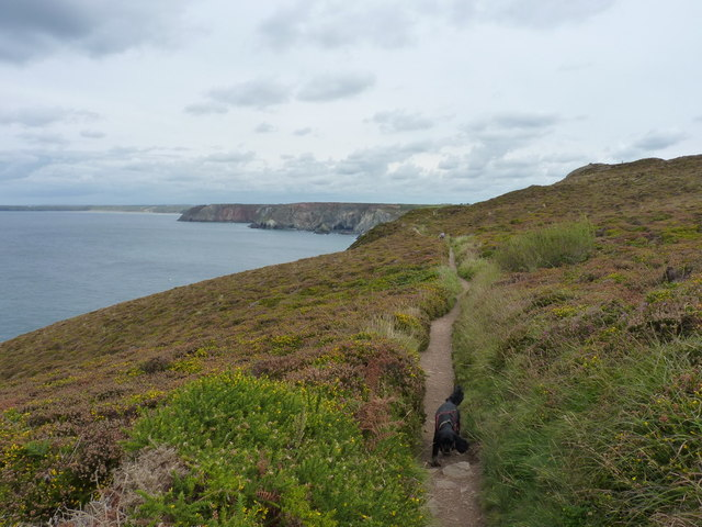 The SW Coast Path west of Polberro Cove