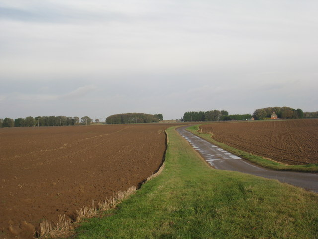 Farm track and Low Farm