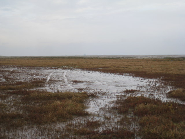 Across the saltmarsh towards Bull Sand Fort