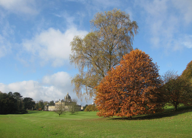 Beech and birch, Castle Howard