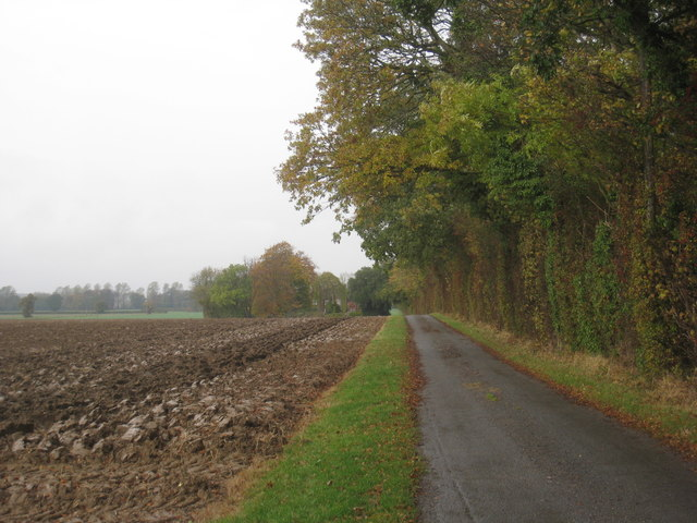 Road to Park Farm in autumn