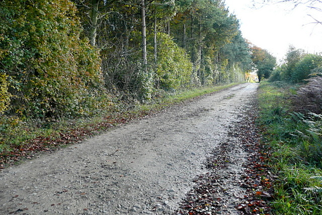 Byway near Model Farm