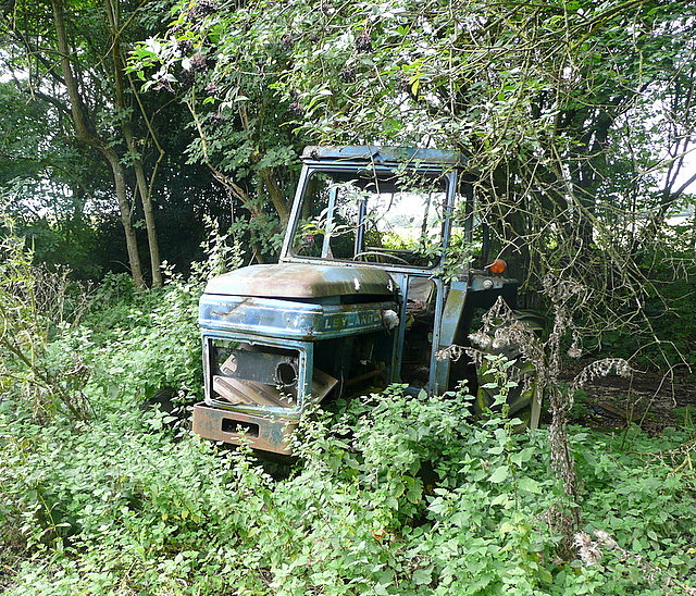 Tractor in Snigg's Wood
