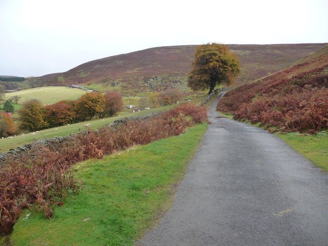 Autumn in Cwm Tyleri