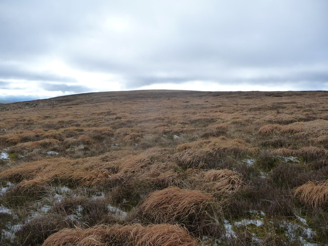 Moorland on Mynydd James