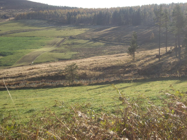 View SSE to Turk Wood
