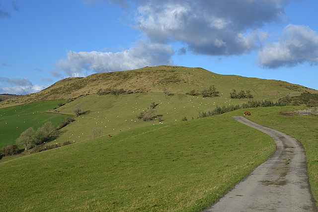 Minor road on Cefn Nantmel