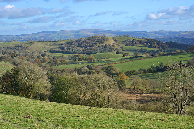 View towards Baxter's Bank