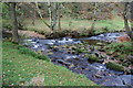 SJ9965 : Confluence of Black Brook and the River Dane by Bill Boaden