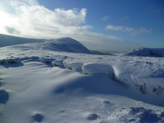 Snowy Hagg