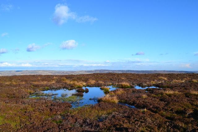 Moorland pool near Madwoman's Stones