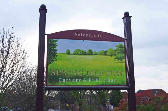 Spring Meadow (2) - sign, Mulberry Tree Hill, Primsland, Droitwich Spa