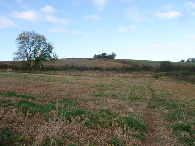 Askew Hill