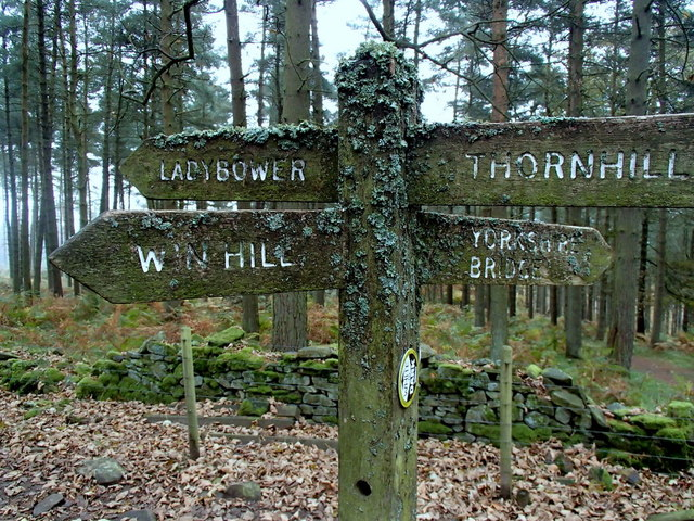 Footpath sign among the trees