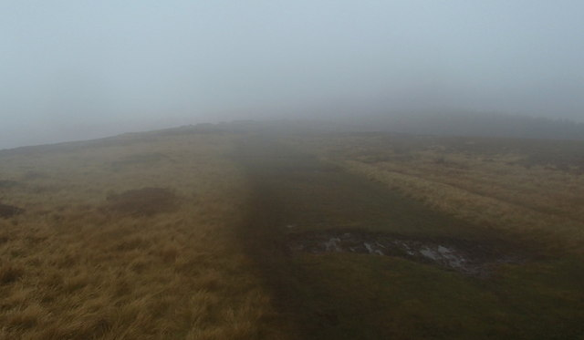 Moorland path in mist