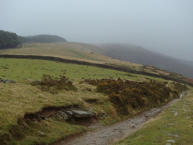 Towards Wooler Knoll