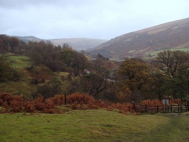 Woodland Valley in November
