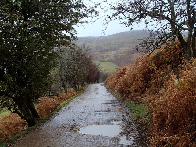 Alport Dale farm track